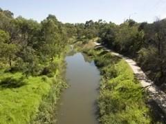 Bike Path on Merri Creek