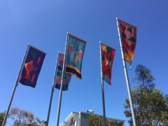 Glenroy Flags