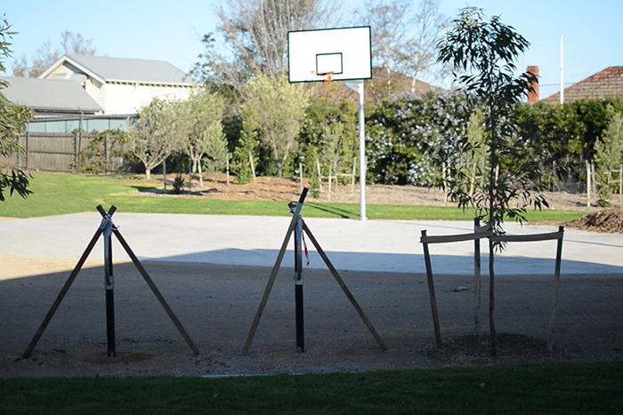 Basketball ring playing area at Bush Reserve
